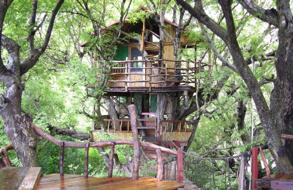 """""""Tsala Treetop"""" at DOMIZILE REISEN"""