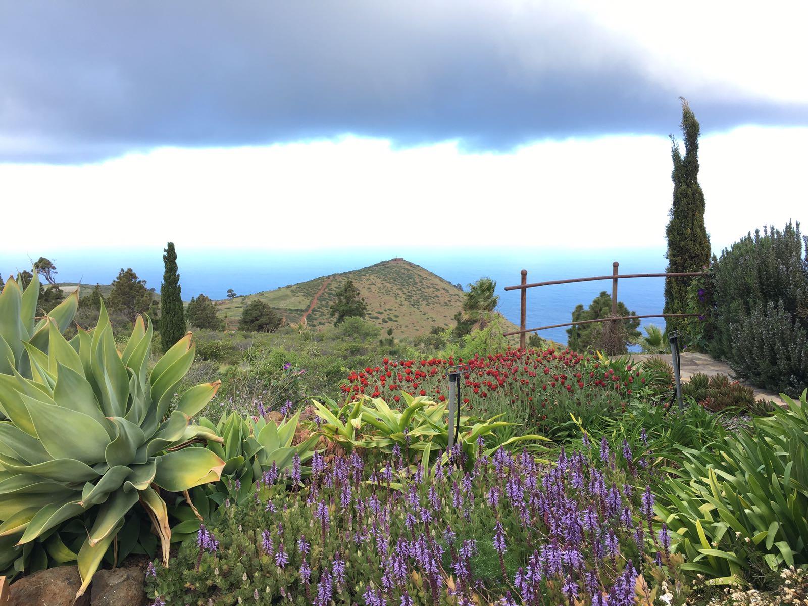 Inspektionsreise Teneriffa Und La Palma