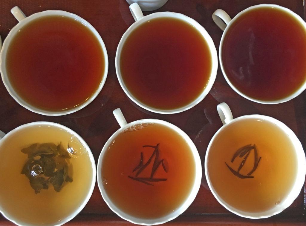 Vor dem Kauf können Gäste in den Teefabriken in Sri Lanka verschiedene Teegeschmacksrichtungen probieren