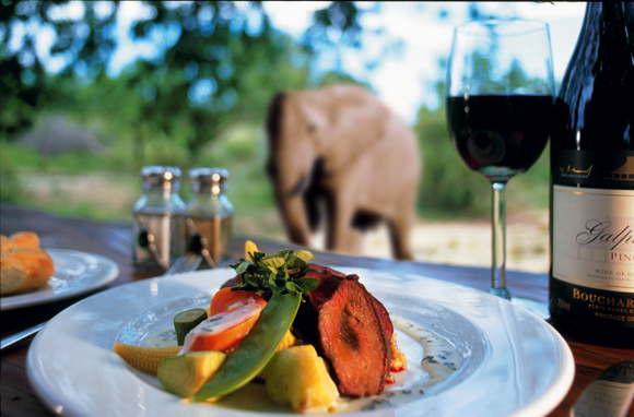 luxury lodge in South Africa luxury South Africa Mpumalanga Krueger National Park Sabi Sand Wildreservat Ulusaba Safari Lodge