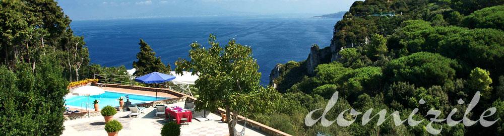 luxury villa-holiday home-vacation villa-with pool-Capri-Italy