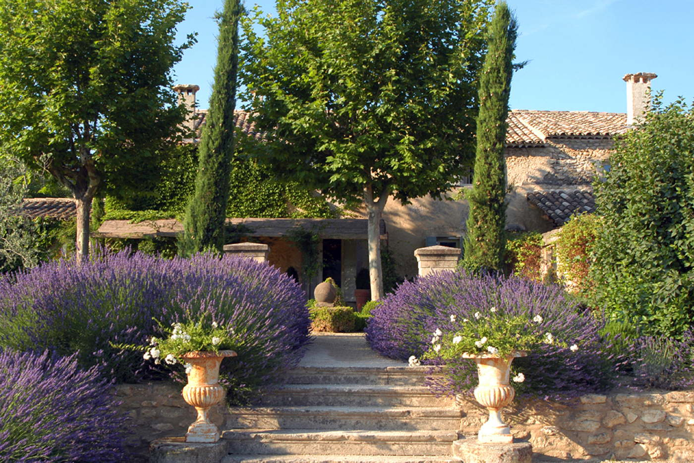 France Provence M 233 Nerbes Luxury Villa Luxury Holiday Home