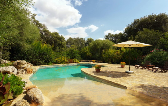 <a href='/holiday-villa/spain.html'>SPAIN</a> - <a href='/finca/spain/balearic-islands.html'>BALEARIC ISLANDS</a>  - <a href='/finca/spain/mallorca.html'>MAJORCA</a> - Buger - Finca Es Sestadors - Pool with mediteranean garden