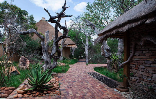 Afrika - SOUTH AFRICA - KRUEGER NATIONAL PARK - Hoedspruit - Camp Jabulani -