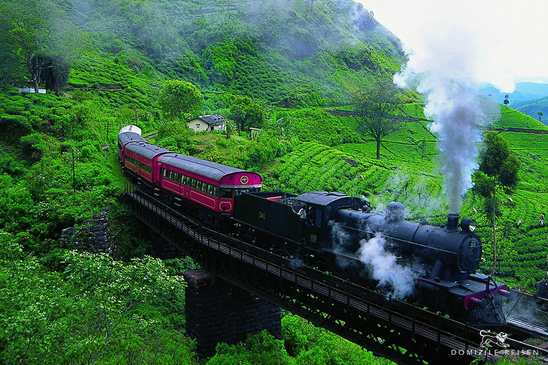 special viceroy train Sri Lanka