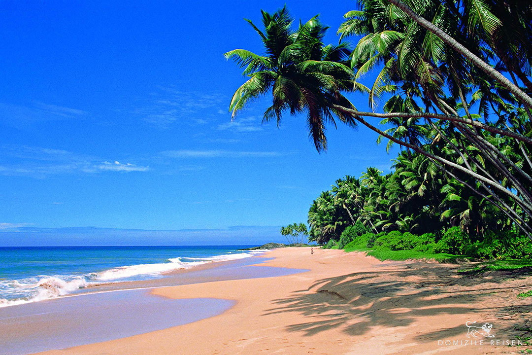 beach in Sri Lanka coasts