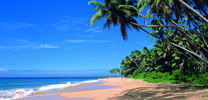 beach in Sri Lanka coasts thumb