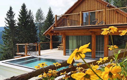Österreich - STYRIA - St. Stefan ob Leoben - Waldchalet Bienenalm - Chalet with heated pool