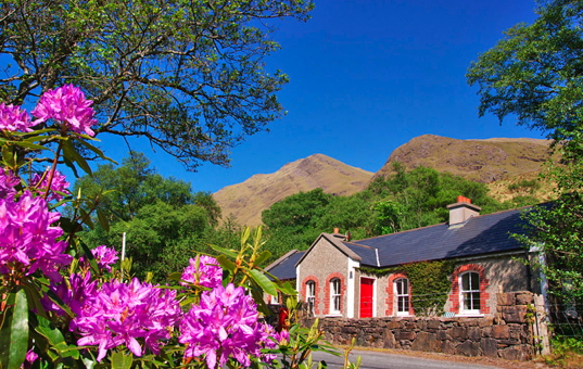 Irland - Connemara - Leenane - Delphi Cottages - Traditionelle Cottage mitten in der Natur am fuße eines Berges