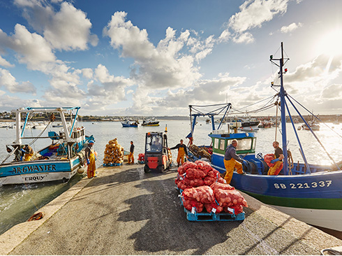 Fischerhafen Bretagne