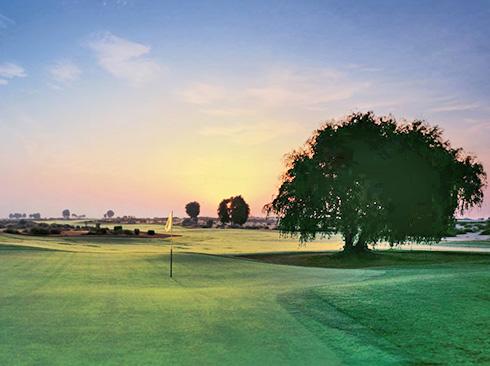 pman golf