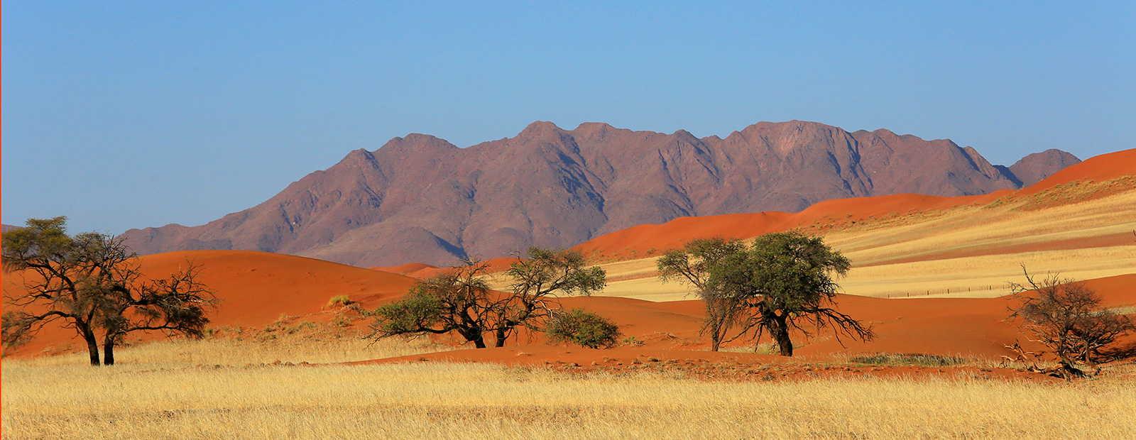 Dünenlandschaft in der Namib Wüste