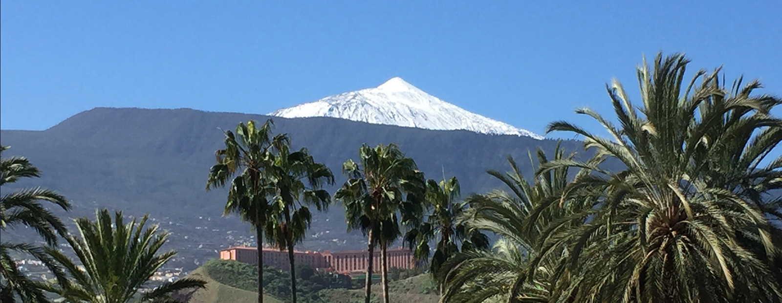 Exclusive Fincas in Tenerife